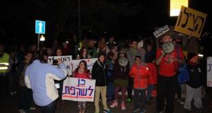 ההפגנה (צילום: שקד שיינס)