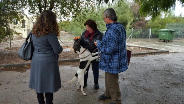 """""""הכלב מאוד התרגש"""". משה ותגית דרורי-איכר מתאחדים עם הוב (צילום: ד""""ר ריאד בדראן)"""