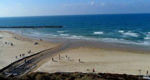 מים שחורים בחוף הרצל (צילום: קורנל גולדשטיין)