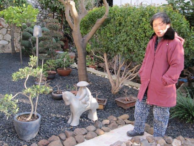 """צי'אקו ז""""ל בגן היפני צילום: עליזה רוזן"""