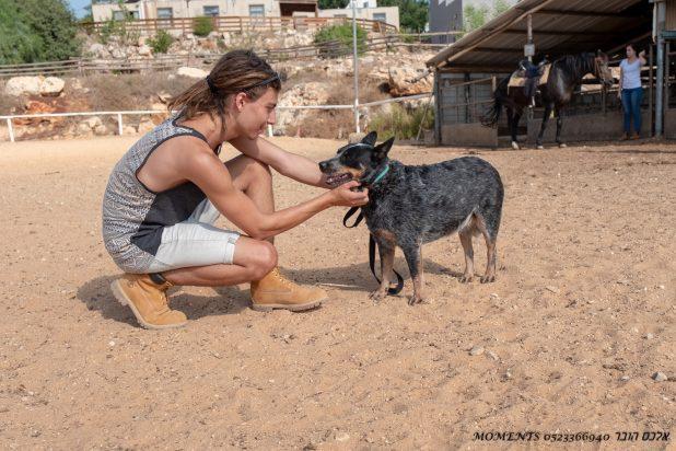 גיל-עד דימרמן עם הכלב צילום אלכס הובר (2