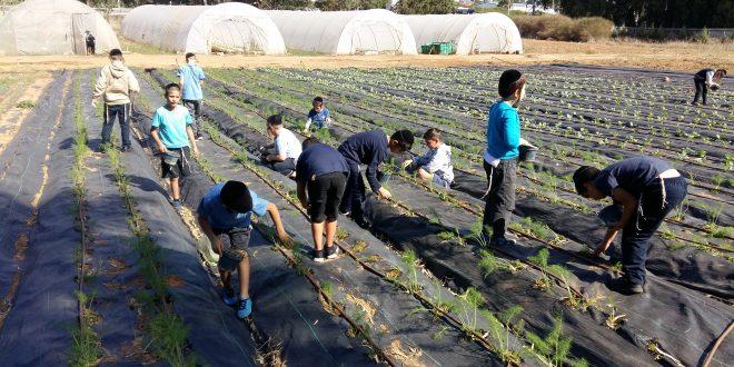 ילדים עובדים בגן ירק צילום עצמי
