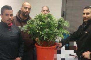 השוטרים עם הסמים שנתפסו (צילום דוברות המשטרה)