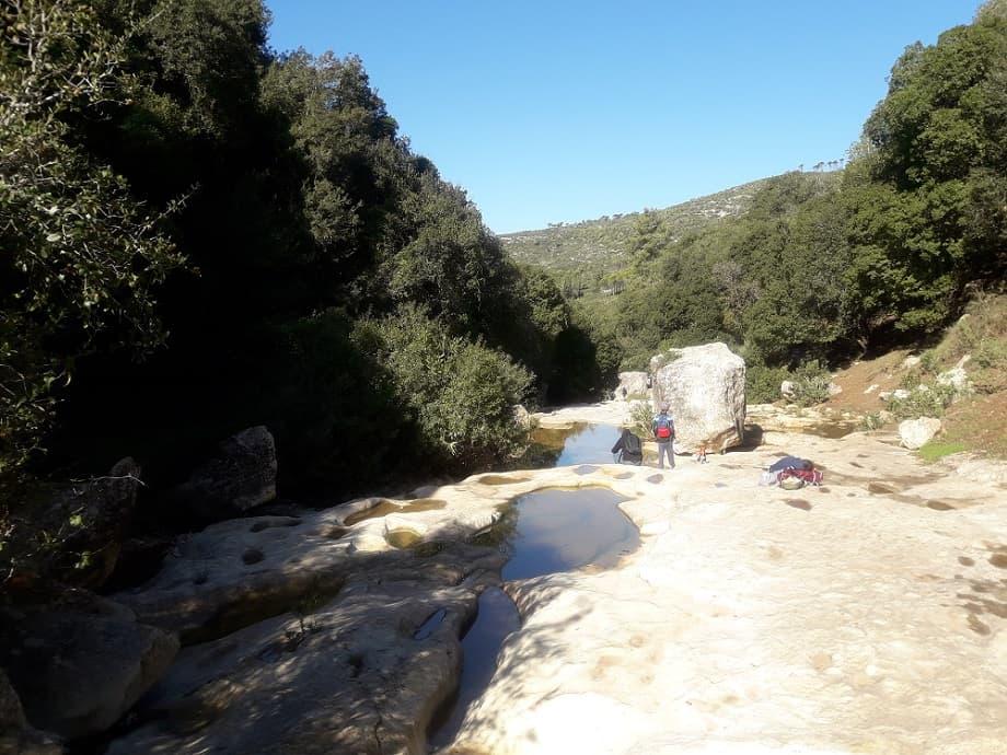גבי המים בנחל אלון. צילום: עמותת תיירות כרמלים