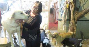 קצת חמלה | איריס שלב מנהריה אוהבת חיות | צילום: ליאת בן דרור
