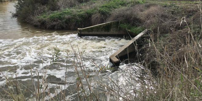 הזרמת זיהום בנחל (צילום: רשות נחל הקישון)