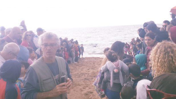 עשרות תושבי הגליל המערבי הגיעו לחזות ברגע המרגש (תמונה: ליאת בן דרור)