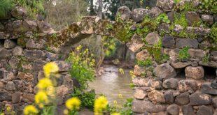 זרימה בירדן ההררי. צילום: רוני  אוז רייזו
