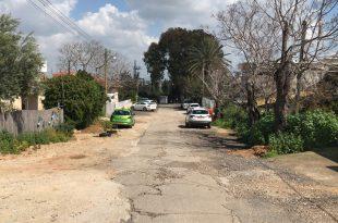רחוב ברנדייס, תמונת מצב