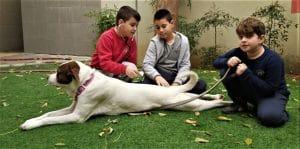 התלמידים עם הכלבה פיתה (צילום דוברות עיריית עפולה)