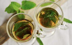 צמח התה תמונה מאתר pixabay