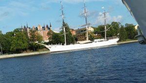 כמה יפה הוא הקיץ בשוודיה | צילום: עלית קרפ