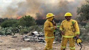 שריפה ביער עירון \ צילום: דוברות כבאות הצלה