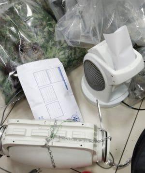 שתילי מריחואנה בדירה בפרדס חנה \ צילום: דוברות המשטרה