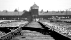 יום השואה הבינלאומי | pexels-pixabay