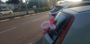 רכבים מקושטים ברחוב חרוד (צילום: מאור בכר)