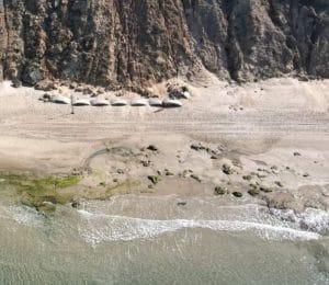 איזור הסירחון על החוף | צילום: באדיבות עמותת צלול