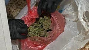 הסמים שנתפסו | צילום דוברות המשטרה