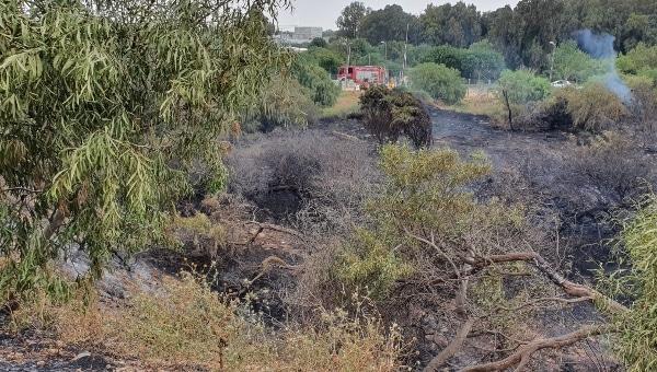 השרפה בקריות | צילום: דוברות כב