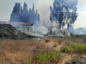 שריפה בשטח פתוח סמוך לבית חולים שוהם בפרדס חנה | צילום: דוברות כיבוי אש